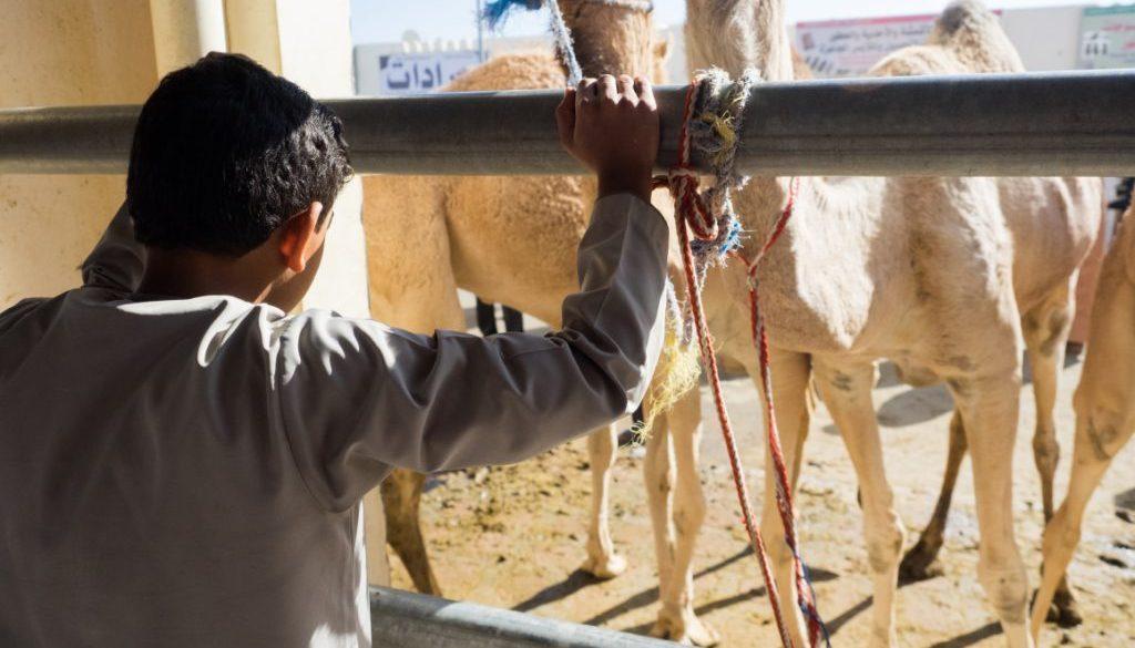 misha szura piwnik-interfoto-targ-Oman- wielblady- dziesko-patrzy-przez-okno