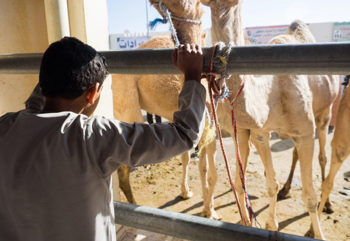 Oman w zdjęciach Małgorzaty Mishy Szura Piwnik