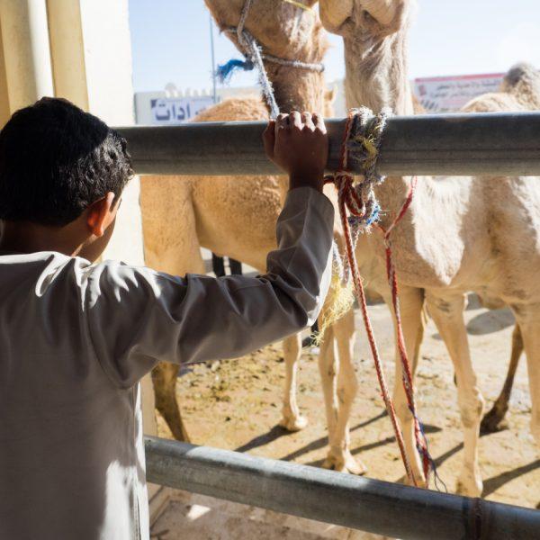 Oman wzdjęciach Małgorzaty Mishy Szura Piwnik