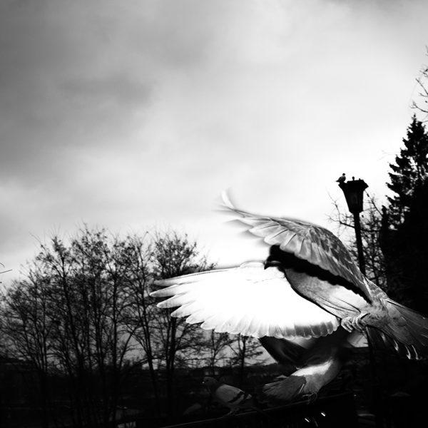 7artisans 28mm f/1.4 – obiektyw doskonały dofotografii ulicznej