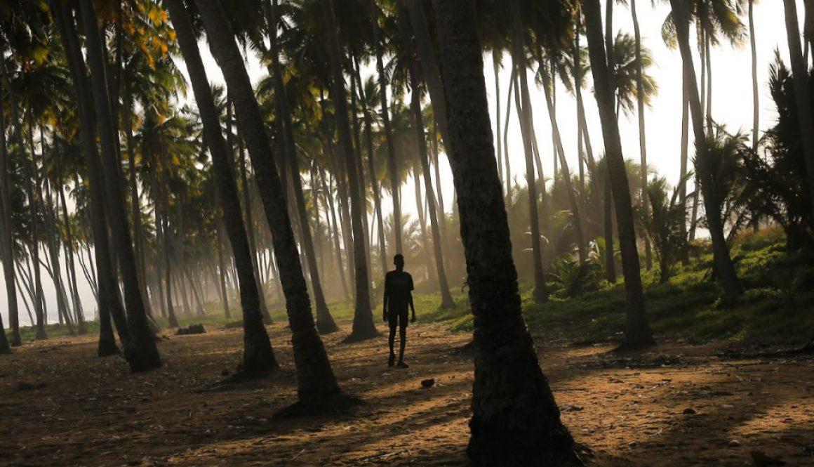 Ghana, człowiek pośród palm, Adrianna Ojrzanowska