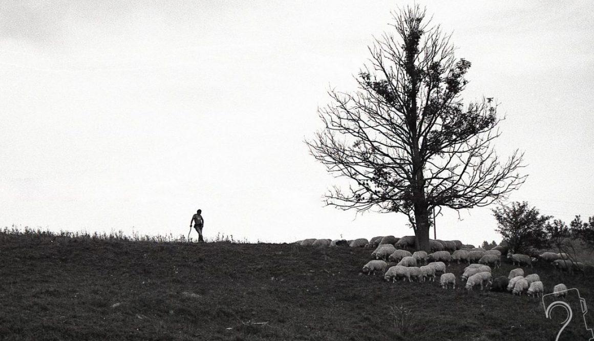 blog skąd dokąd, gabriela komorowska, interfoto.eu