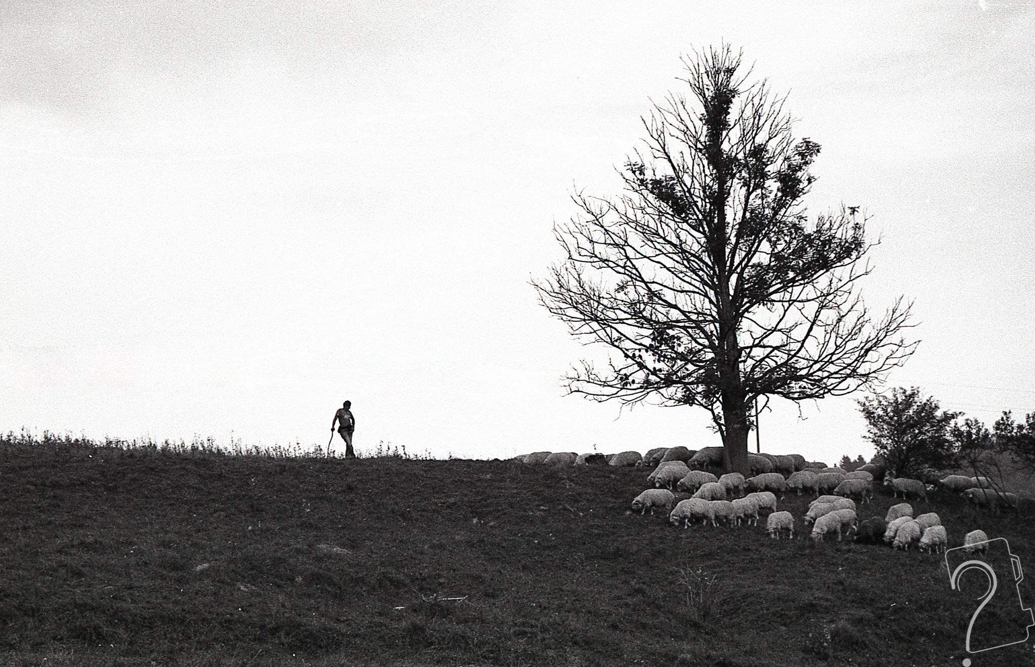 Chyba jednak wyciągnę aparat – Gabriela Komorowska