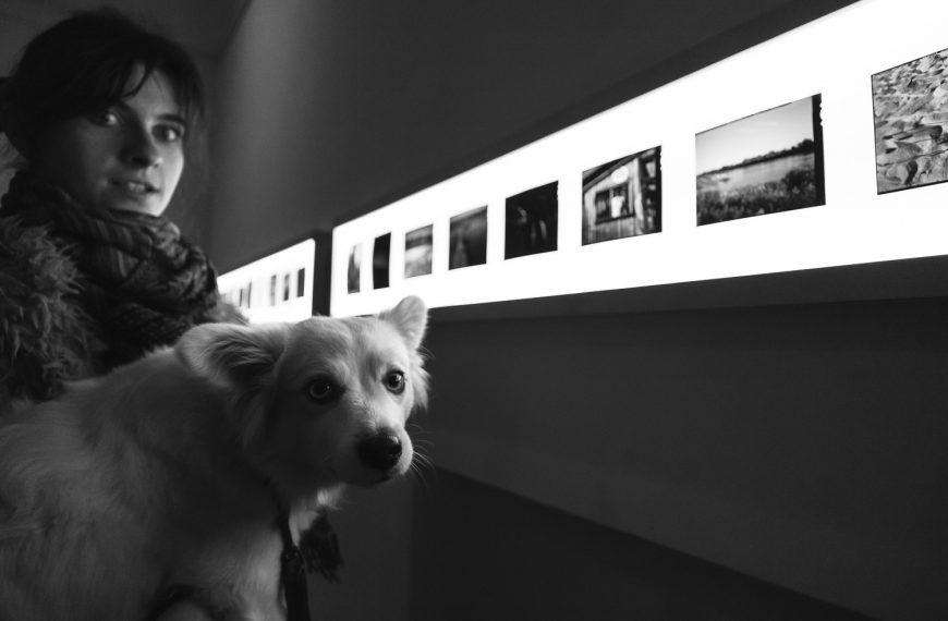 Fotony – wystawa podsumowująca projekt- OSTATNIE ZWIEDZANIE!