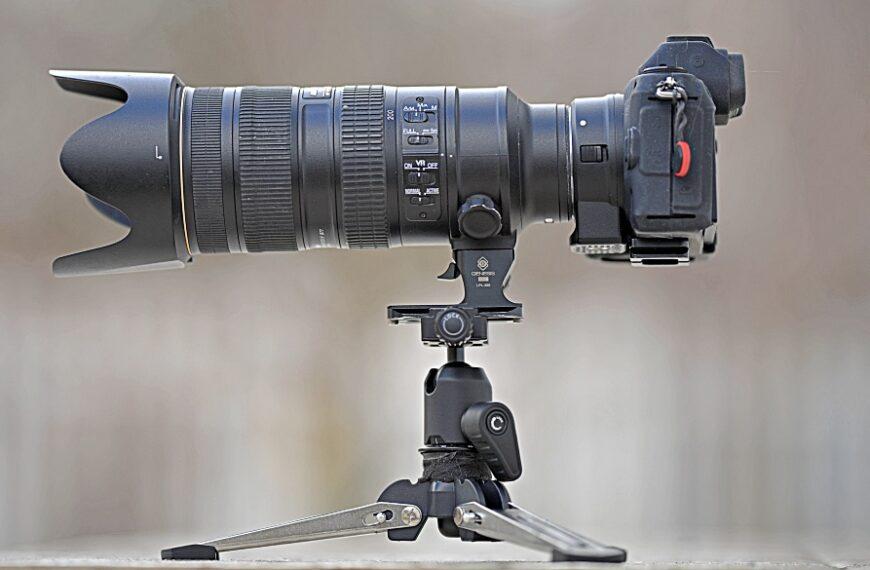 Psia fotografia: mini-przewodnik sprzętowy